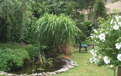 im Garten der Tagesklinik